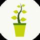 Растения для очистки пруда - БИОПЛАТО