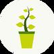 Растения для очистки пруда...