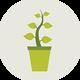 Растения для БИОПЛАТО