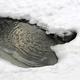 Зимние обогреватели для пруда