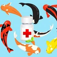 Срочное лечение прудовых рыб на 100 000 л - ОМНИПОНД - 5 л + ЦИПРОПОНД 5 л