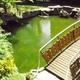 Средства против зеленой воды
